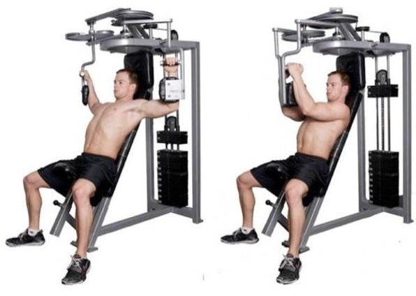一般的マシン 肩関節水平屈曲 初動負荷トレーニング 兵庫県宝塚市 かみたに接骨院 整骨院